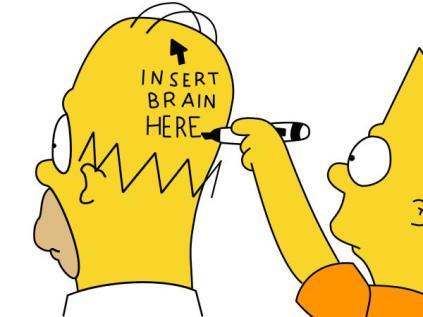 homer-insert_brain