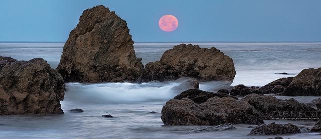Dormant Dreams Adrift, Malibu Ca